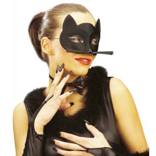 Loup chat noir