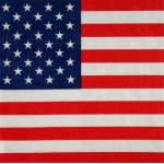 20 serviettes Etats Unis