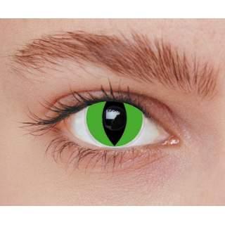 Lentilles iris chat vert